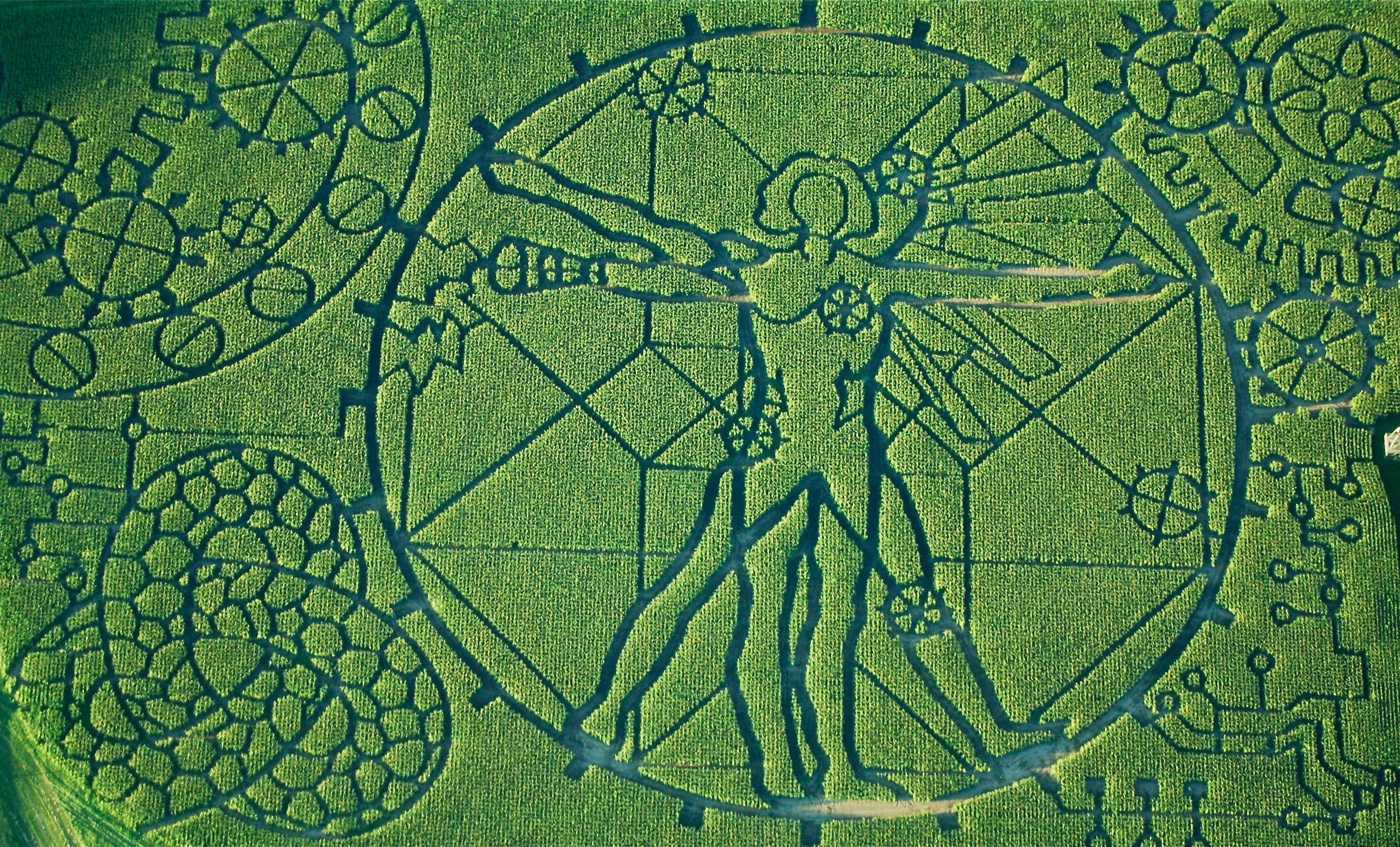 The Meaning In The Maze Treinen Farm Corn Maze Pumpkin Patch